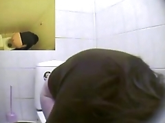 Restroom Toilet Voyeur Cam 2, See more at : hot-cams.org